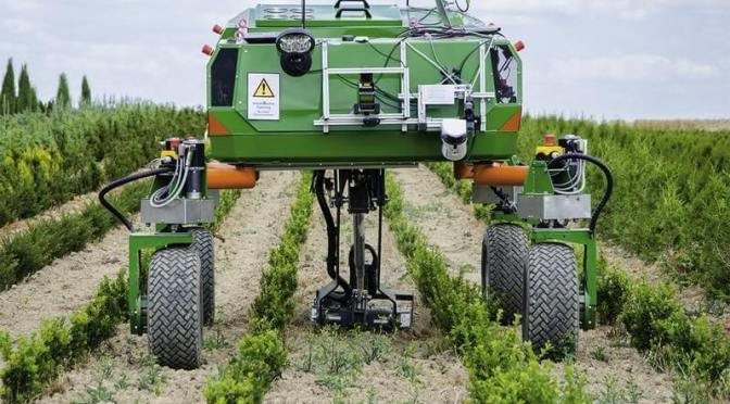 Agriculture robots are capable enough to sort ripe fruits without human intervention.